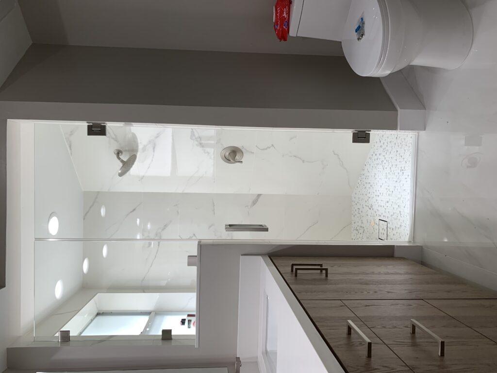 Shower Fixed Panel and Door